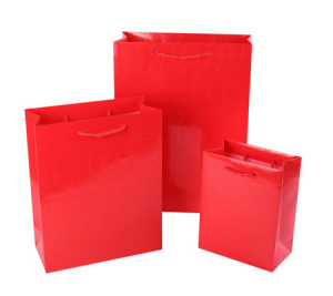 Luxury recyclable paper party bags