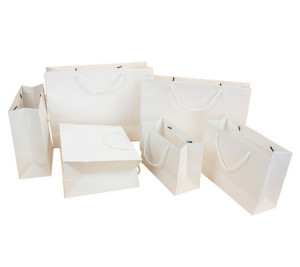 Advertising Gift Paper Bag
