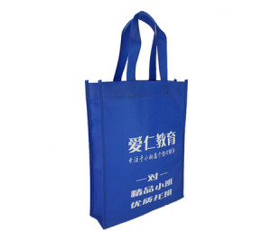 Foldable Education non woven bag fabric handles